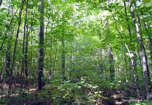Oak Ridges Trail Association East Gwillimbury Yrf
